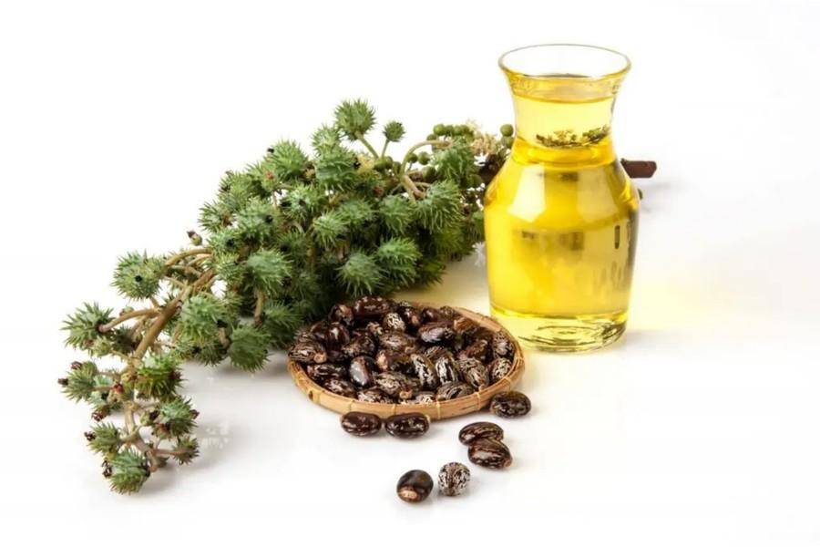 huile-de-ricin-